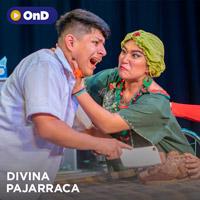 DIVINA PAJARRACA STREAMING TLK PLAY - LIMA