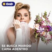 SE BUSCA MARIDO CAMA ADENTRO STREAMING TLK PLAY - LIMA
