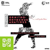 ORNITHORHYNCHUS ANATINUS TEATRO DE LA UNIVERSIDAD DEL PACÍFICO - JESUS MARIA - LIMA